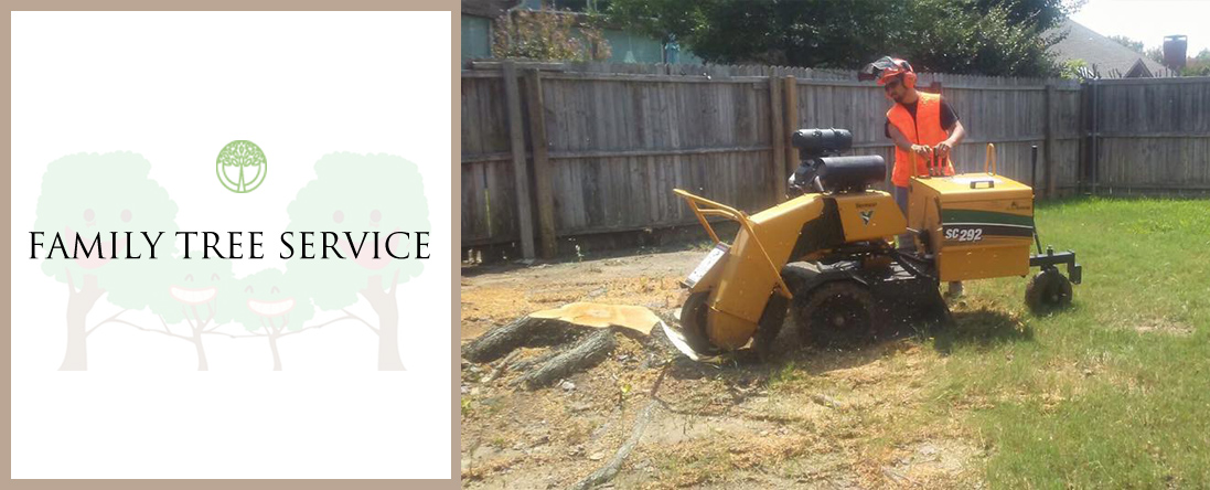 Family Tree Service offers  Stump Grinding & Tree Removal in Lewisville, TX